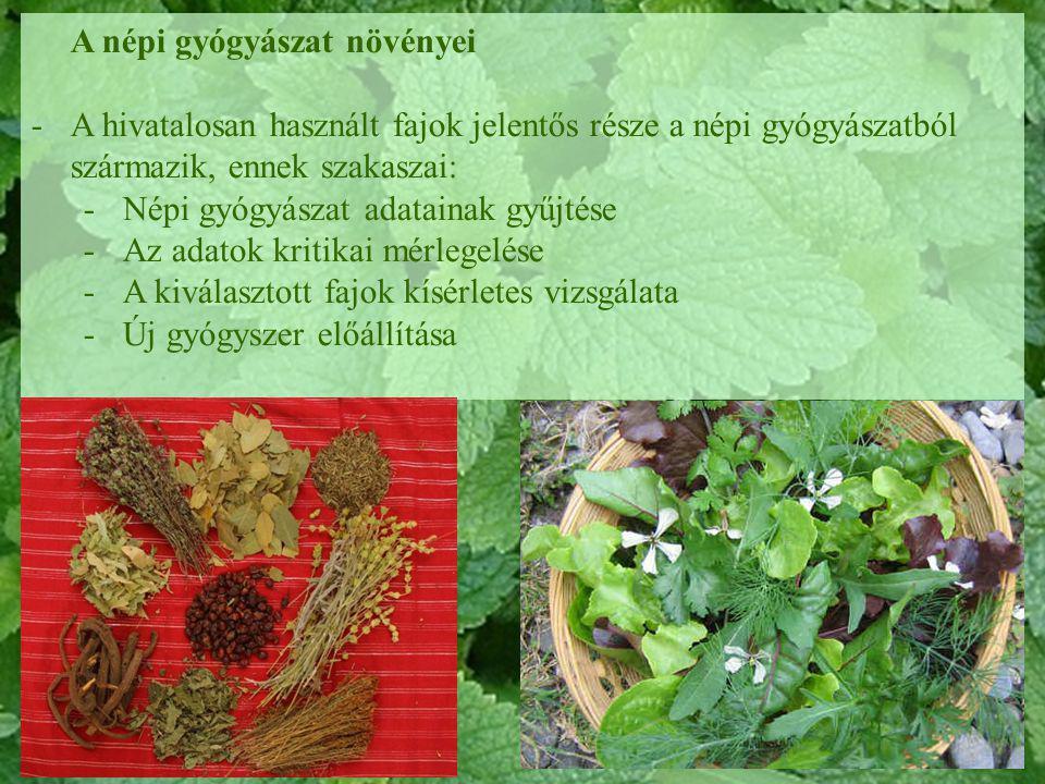 növények pikkelysömörhöz a bőrön kerek piros foltok hámlanak